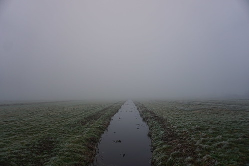 Fog in the polder  29-12-16