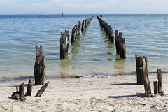 Clifton Springs Jetty... (The Pocket Rocket) Tags: oldjetty cliftonsprings bellarine peninsula victoria australia