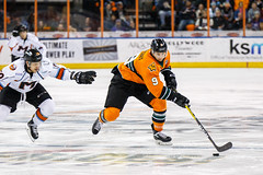 "Missouri Mavericks vs. Quad City Mallards, December 31, 2016, Silverstein Eye Centers Arena, Independence, Missouri.  Photo: John Howe / Howe Creative Photography • <a style=""font-size:0.8em;"" href=""http://www.flickr.com/photos/134016632@N02/31972647951/"" target=""_blank"">View on Flickr</a>"