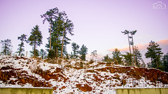 After Snow fall (M.S.J Photography) Tags: snow mountains trees sunset asia pakistan nikon msjphotography wow colorful