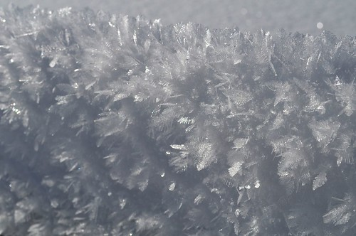 Wind-blown snow crystals