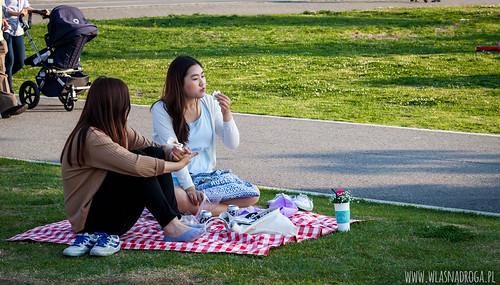 Weekend w parku