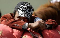 Tibetan Boy (oeyvind) Tags: china tibet amdo kham     yushu qinghai chn   jyekundo gyegu