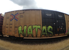 natas (always_exploring) Tags: graffiti freight ctk natas