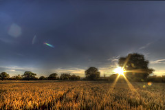 Sunburst (Charliebubbles) Tags: sunset field canon eos crewe sunburst hdr photomatix 60d 300715 canoneos60d leightonhospital photomatixpro4