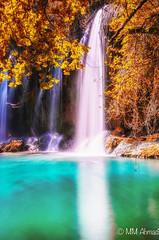 Colours of fall (MM Ahmad) Tags: turkey nikon antalya tamron 2015 nikond5100