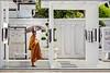 Wat Pho (Heinrich Plum) Tags: heinrichplum plum fuji xe2 xf1855mm mönch monk schirm regenschirm sonnenschirm umbrella watpho thailand bangkok