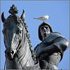 Colleoni - Venezia, Campo San Zanipolo (pom.angers) Tags: canoneos400ddigital 2009 colleoni venezia italia italy venice veneto europeanunion october sculpture man gull bird horse 100 150