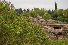 DSC_4167 (tesseracultural) Tags: italica santiponce sevilla romano roman spain andalucia españa tessera