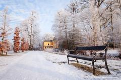 Kasteel - Estate Nienoord (Reina Smallenbroek) Tags: estate kasteel borg leek netherlands groningen westerkwartier snow winter rijp hoarfrost reif grive bench bankje trees bomen nienoordsingel nienoordslaan