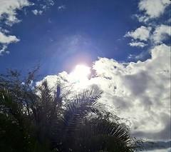 Half of a sun halo (Viva_Viv) Tags: sunhalo halo clouds sky palm trees sun lasvegas