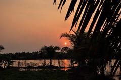 Kerala (jitin914) Tags: kerala india kuttanad alleppey alappuzha sunset
