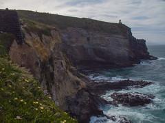 421 - Taiaroa Head à Otago Peninsula