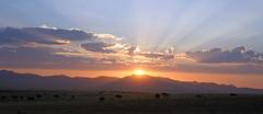 DSC02308 - NAMIBIA 2010   Sunset Aus-Vista (HerryB) Tags: namibia afrika südafrika südwest afrique africa 2010 sony tamron alpha bechen heribert fotos photos flickr minolta konica dynax photography herryb heribertbechen reise safari rundreise aus garup wildhorses eaglesnest lodge off nowhere einsamkeit sunset sonnenuntergang sundowner