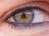 03 - January 03 2017 - I wish my eyes could take photos... (Kristoffersonschach) Tags: auge 365the2017edition 3652017 day3365 3jan17