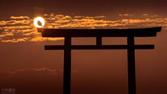 Isosaki (Jiratto) Tags: aged ancient animal antique bird city ibaraki isosaki japan landscape nature oarai old sea shrine sunrise temple tori town travel higashiibarakigun ibarakiken jp
