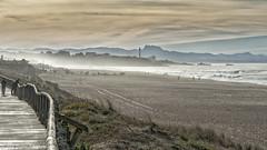 Sortie à la Barre d'Anglet le 10-12-2016 (Filigrane)-17 (yoyolg33) Tags: vert paysbasque côtebasque merocéanplageangletplagedelebarre