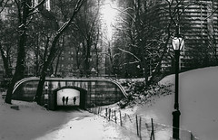 Snow (∤ Esther ∤) Tags: park trees sky city sunset winter people water cold travel light clouds architecture tree ny new york black white snow central shadows ice manhattan centralpark canon 24mm
