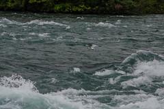Niagara Falls Day One -3 (Webtraverser) Tags: niagarafalls americanfalls d7000 waterfalls newyork unitedstates us
