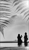 F_47A3457-2-BW-2-Canon 5DIII-Canon  70-300mm-May Lee 廖藹淳 (May-margy) Tags: maymargy bw 黑白 人像 海邊 蕨類 夕陽 剪影 背影 倒影 街拍 streetviewphotographytaiwan 線條造型與光影 linesformandlightandshadows 心象意象與影像 naturalcoincidencethrumylens 高雄市 台灣 中華民國 taiwan repofchina f47a34572bw2 portrait seashore reflection fern ships 商船 sunset kaoshiungcity canon5diii canon70300mm maylee廖藹淳