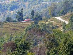 201411.3707.Nepal.Sarangkot (sunmaya1) Tags: nepal sarangkot
