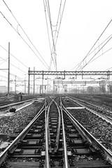 senza titolo-4681 (mircs79) Tags: stazione binari cavi milano