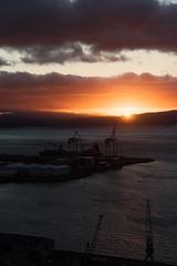 steel dawn (hoodoo youdo) Tags: leica vertical landscape dawn harbour voigtlander cranes 25 wellington m9 75mm colorheliar