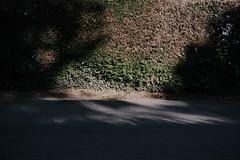 Untitled (lpfmparis) Tags: light texture 35mm shadows emptiness analogic lpfm 160nc