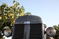 IMG_0387 (ACATCT) Tags: old españa tractor spain traktor agosto toledo antiguo massey pistacho tembleque barreiros 2015 bustards perdices liebres avutardas ff30ds r350s