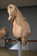 Forepart of a horse from the Mausoleum of Halicarnassus, ca. 350 BCE (1) (Prof. Mortel) Tags: london mausoleum britishmuseum halicarnassus