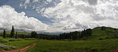 Engineer Mountain Panorama (Patrick.Russell) Tags: panorama mountains clouds forest landscape outside outdoors nikon colorado silverton alpine co vista sanjuans durango expanse d300 singletrack cloudsstormssunsetssunrises