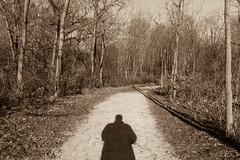 344/366 - Where I Stand (Ravi_Shah) Tags: nj autumn pathway cy365 potd blackandwhite sony walkway fall a6000