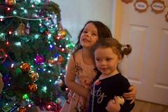 DSC_2258 (seustace2003) Tags: baile átha cliath ireland irlanda ierland irlande dublino dublin éire božič nollaig noël natale navidad kerst