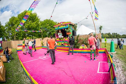 Wildness festival