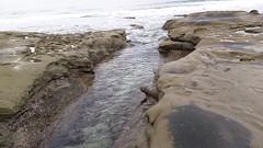 (wmpe2000) Tags: 2016 cell video daytrip lajollatidepoolsscripps tidepools lajolla ocean wavecutplatform channel seasurge erosion vid20161023102139 geology