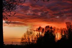 Loppersum en avondkleuren (TeunisHaveman) Tags: groningslandschap landscape landschap loppersum luchten nature sunset zonsondergang natuur 100 500 1000 panoramio501850465650328