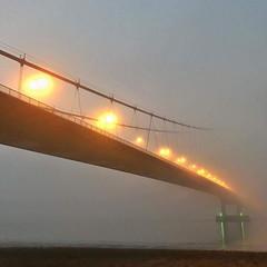 Fog Lights (Mootman) Tags: humber lights fog humberbridge