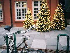 Bicycle [E] (borishots) Tags: lenstagger bike bicycle bokeh bokehlicious bokehwhore sonya7 canonfd28mmf2