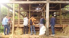 P_20160812_132331 (kasemarang) Tags: arsitektur komunitas semarang architecture community kambing ayam kandang village desa study field goat chicken