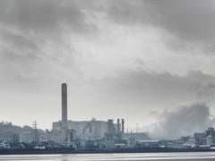 Industrial Scene (50 Shades of Grey) (foggyray90) Tags: chimneys factories merseyside pickeringpastures widnes runcorn watervapour naturalmonochrome 50shadesofgrey