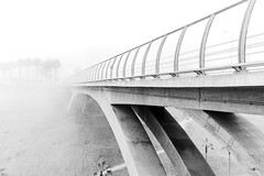 Fog over the bridge (rickm187) Tags: puente bridge enero 2017 perú lima peru canon 1855mmcanon 18 55 mm summer blackandwhite bw black white fog neblina tree palmeras walk road monochrome miraflores blanco y negro