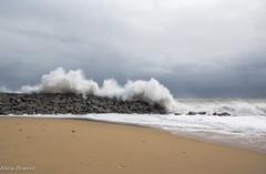temporal (nuri_bri) Tags: onades olas temporal mar sea mediterraneo tormenta waves storm espigo mataró costabarcelona es bcn