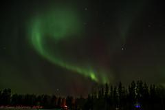 The Aurora (Timo Halonen) Tags: aurora borealis revontuli night sky yö taivas isokylä laihia ostrobothnia nikon dx d5200