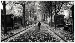 Paris - Film noir (Photographische Einblicke) Tags: monochrom paris montmartre schwarzweis fujifilmxpro2