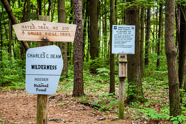 Hoosier National Forest - Charles C. Deam Wilderness Area - June 3, 2015