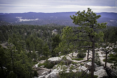 Una vista desde el espacio (Saúl Martínez // Photojournalist) Tags: california sky nature forest de landscape mexico woods san paisaje sierra pedro ensenada astronomy baja martir astronomía