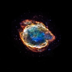 Exploded Star Blooms Like a Cosmic Flower (Smithsonian Institution) Tags: nasa xray astronomy supernova chandra supernovaremnant chandraxrayobservatory type1a g299229