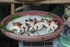 market / July / 2015 / Khon Kaen, Thailand (gudiodotdotdot) Tags: thailand nikon market frog khonkaen thaifood d5000 thaiisan ตลาดแลงคำไฮ