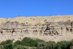 IMG_0161.jpg (DrPKHouse) Tags: arizona unitedstates loco bullhead ehrenberg chemehuevi