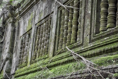 The Living Walls (lowebowes) Tags: trevel travelcambodia travelasia angkor angkortemples cambodia ancient ancientruins ancientcivilization moss treeroots temple temples siemreap architecture ancientarchitecture